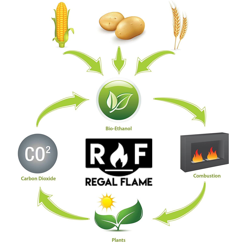 Regal Flame Premium Ventless Bio Ethanol Fireplace Fuel